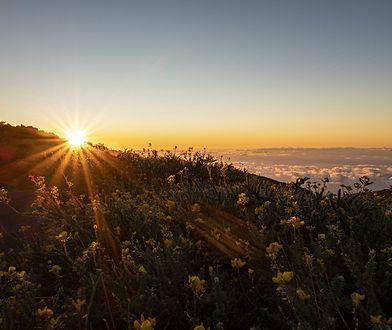 La Palma – dlaczego warto odwiedzić Wyspy Kanaryjskie?
