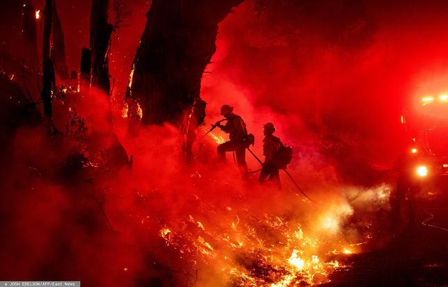 Pożary w Kalifornii. Trwają ewakuacje - na zdjęciu strażacy walczą z pożarem w Santa Paula (kilkadziesiąt kilometrów od centrum Los Angeles)