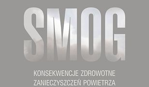 Smog. Konsekwencje zdrowotne zanieczyszczeń powietrza