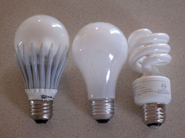 Żarówki LED niszczą wzrok! Przerażające wyniki badań