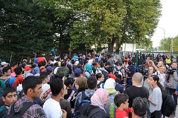 Imigranci na zamkniętej granicy Serbii z Węgrami