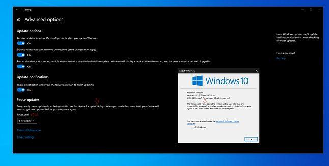 Ustawienia aktualizacji Windows 10 19H1, źródło: reddit.