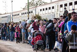 Meksyk: zaginęli imigranci z Hondurasu