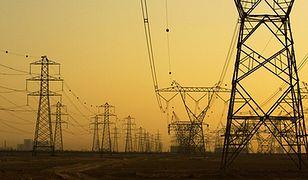 Piechociński: ceny energii powinny być na maksymalnie niskim poziomie