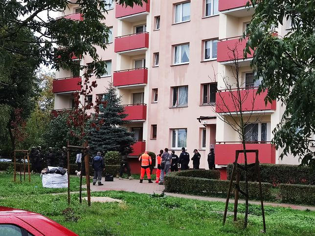 Szczecin. Akcja antyterrorystów. Zatrzymali agresywnego sąsiada