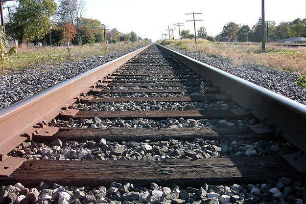 Światowy Kongres Żydów o złotym pociągu