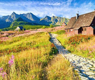 Kierunek Polska. Coraz więcej zagranicznych turystów odwiedza nasz kraj