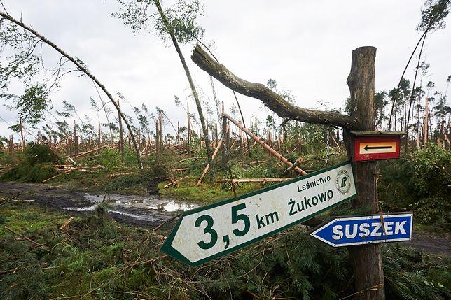 Tragedia w Suszku. Prokuratura postawiła zarzut meteorologowi