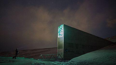 """Kod z GitHuba wśród setek tysięcy nasion. Trafił do """"krypty zagłady"""" na Spitsbergen"""