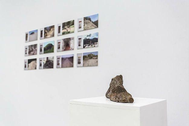 Refleksja nad przemijalnością przyrody na wystawie w BWA w Katowicach