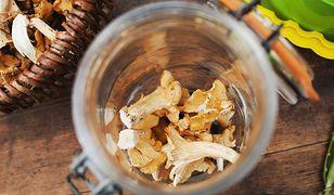 Nalewka z kurek, czyli kurkówka. Poznaj przepis na napój idealny na jesienne wieczory