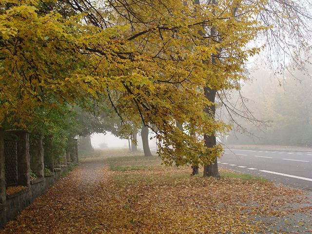 Typowo jesienny weekend
