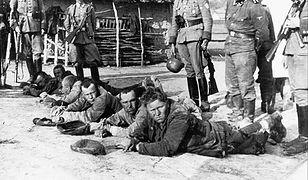 W czasie okupacji niemieckiej 1939–41 Niemcy rozstrzelali w Palmirach ponad 2,2 tys. osób, głównie więźniów Pawiaka