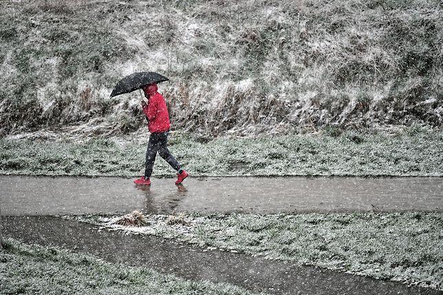 Pogoda. Wrocław. 7 kwietnia 2021 - śnieg, deszcz i tak na zmianę. W weekend wróci wiosna, ale na krótko