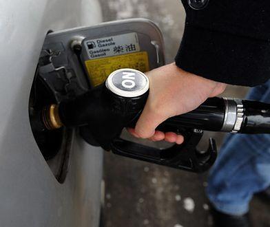 Japoński diesel - rozsądne propozycje