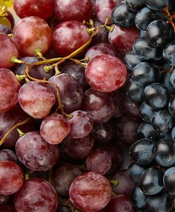 Winogrona - kalorie, właściwości, wartości odżywcze