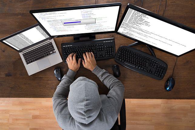 Holendrzy zdobyli kluczowe informacje o rosyjskim wywiadzie? Hakerzy zhakowali hakerów