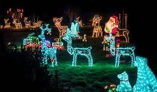 Polacy pokochali świąteczne iluminacje, ale czasami zapominają o… sąsiadach