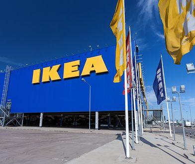 Pękające talerzyki i miski z Ikei. Sieć poinformowała o niebezpieczeństwie