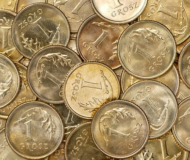 Monety groszowe.