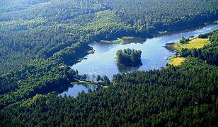 Puszcza Knyszyńska - unikatowa przyroda wschodniej Polski
