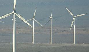 Tauron uruchomił trzecią co do wielkości farmę wiatrową w Polsce
