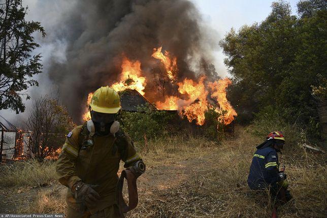 Pożary trawią Grecję. Szpitale w gotowości