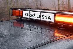 """Skarżysko-Kamienna. Postrzelony strażnik. """"Broń komendanta"""""""