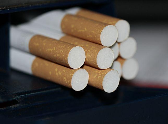 Katowice. Odpowie za przemyt papierosów do Wielkiej Brytanii.