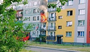 Mysłowice. 11 zastępów straży pożarnej gasiło pożar w bloku