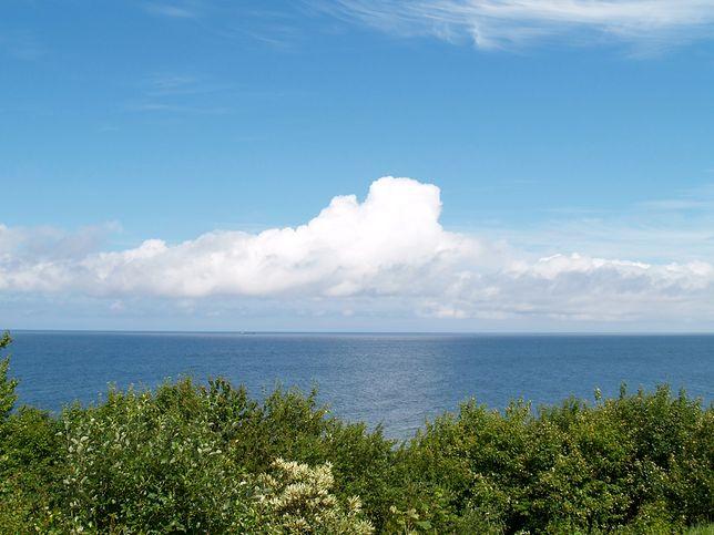 Bałtyk widziany z klifu w Jastrzębiej Górze