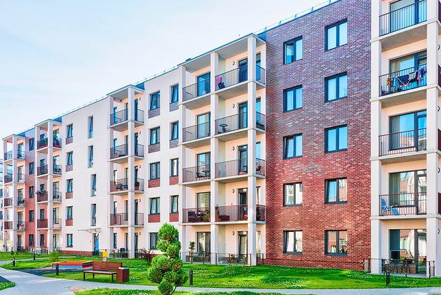 Najem okazjonalny cieszy się niewielką popularnością na polskim rynku, mimo że jest to obecnie jedyna formuła, która chroni interesy właścicieli i pozwala w miarę szybko pozbyć się z mieszkania nieuczciwego najemcy.