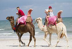 Dżerba znów modna. Co oferuje największa tunezyjska wyspa?