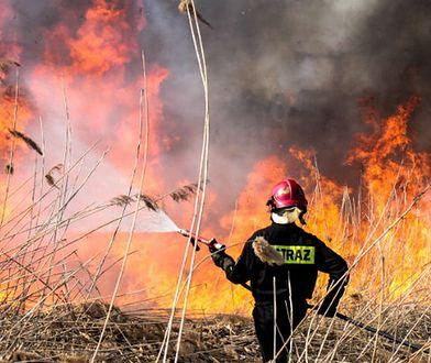 Wypadek podczas kontrolowanego wypalania gałęzi. Zginął 55-latek