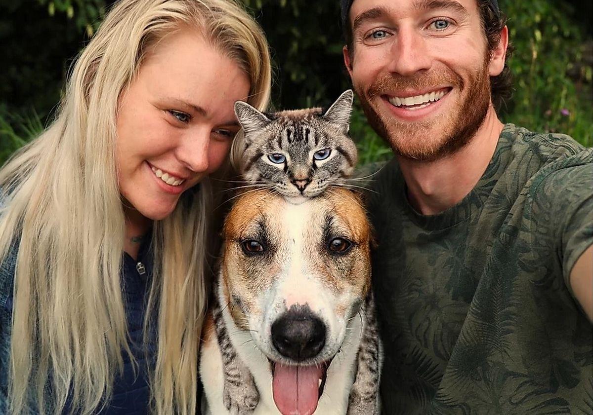 Jak pies z kotem. Czworonożni podróżnicy robią furorę w Internecie