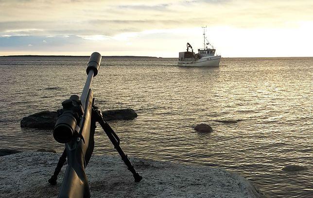 Polowanie na foki w Szwecji