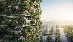 """Chiny - powstaną wieżowce, przypominające """"pionowe lasy"""""""