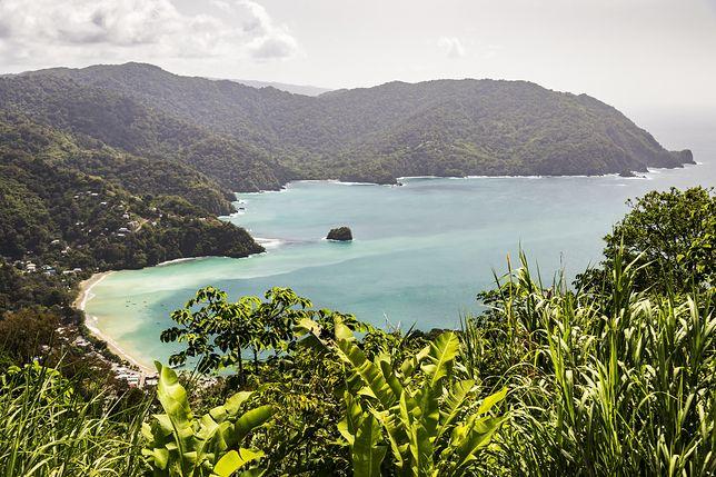 Wyspa Tobago