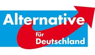 Alternatywa dla Niemiec to ugrupowanie eurosceptyczne
