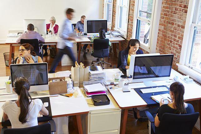 Menedżerowie, doświadczeni rekruterzy i informatycy - pod względem finansowym ten rok jest dla nich bardzo udany.