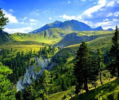 Góry to także ogromne połacie zieleni, dające wytchnienie od codzienności