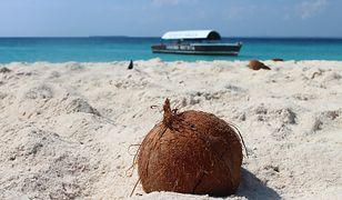 Gdzie na egzotyczny urlop latem? Zobacz nasze propozycje