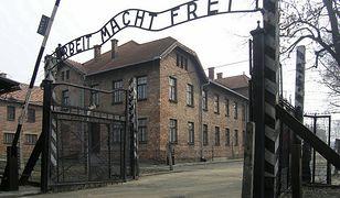 Anglicy ukarani za wandalizm w Auschwitz. Byli na szkolnej wycieczce