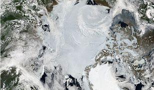 Mozaika obrazów Arktyki autorstwa MODIS.