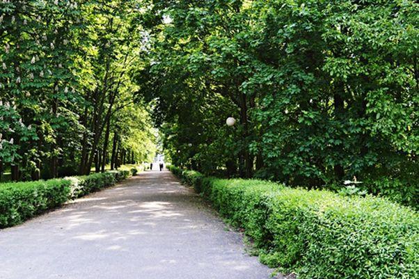 Poznaj Poznań od strony natury, czyli 5 najpiękniejszych parków i ogrodów w Poznaniu
