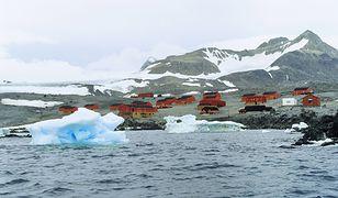 Antarktyda. Padł nowy rekord temperatury. Tak ciepło jeszcze nie było