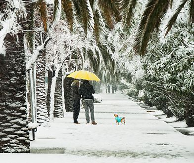 Przymrozki w Australii, super kwitnienie w Dolinie Śmierci i inne anomalie pogodowe