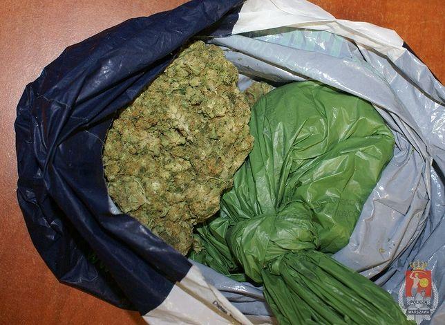200 g marihuany na Pradze Północ