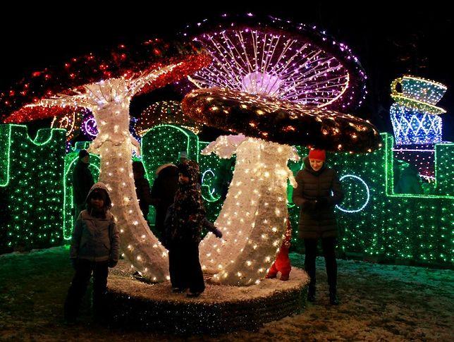 Labirynt Światła w Wilanowie już od listopada! [WIDEO]