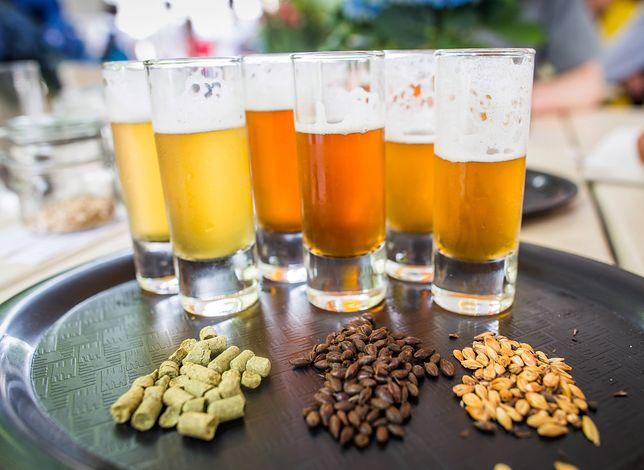 Zrobienie piwa nie wymaga jakichś specjalnych umiejętności.